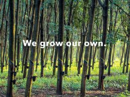Patagonia - We grow our own